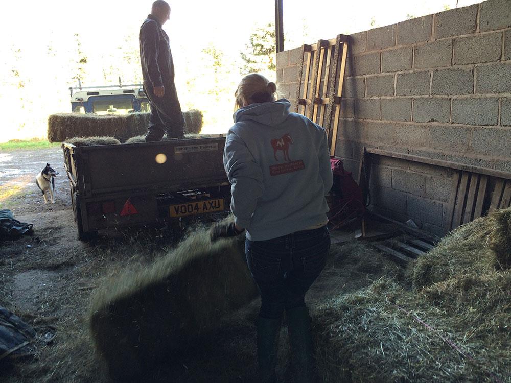 Unloading the hay
