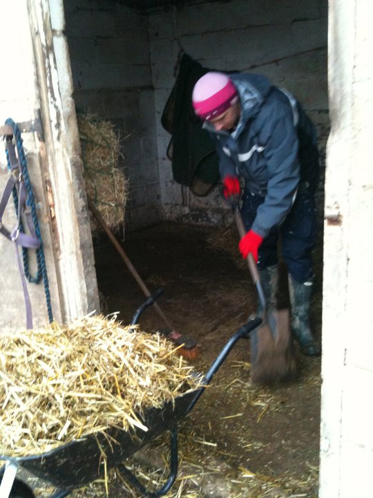 Mucking out stables