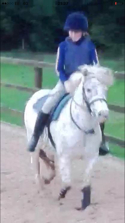 Freckles being ridden in new home
